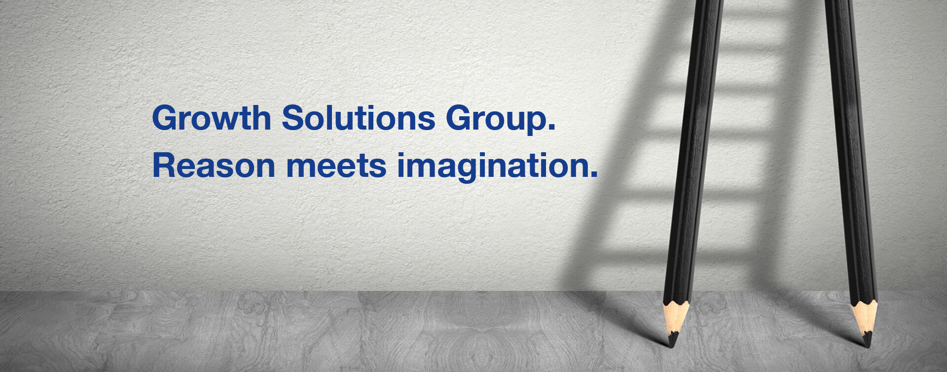 Growth Solutions Group (GSG)